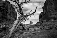 Park Avenue to Courthouse Towers: Arches National Park